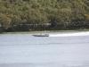 ohba-hot-boat-2011-44